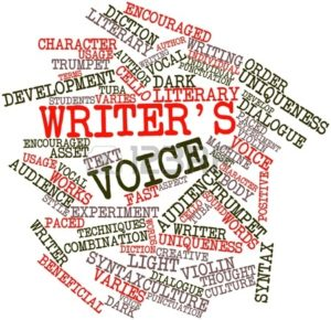 writer-s-voice-terms